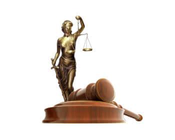 Персональный представитель в суде