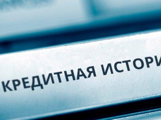 За предоставление недостоверной информации в бюро кредитных историй кредитор понес наказание рублем.