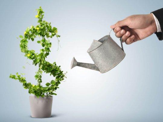 Инвестиции в недвижимость, не всегда приносят прибыль!